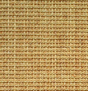 Salvador Sisal rug Chablis with edging