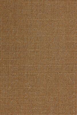 Salvador Sisalt rug Bronze with edging