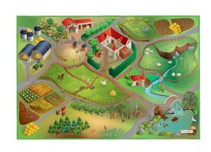 Toy carpet with roads - The farmhouse