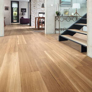 Design Gulv Looselay Long Plank - Sitron Spotted Gum