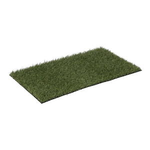 Grass Carpet Kato