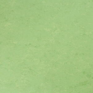 Tarkett Veneto Linoleum flooring xf² APPLEGREEN