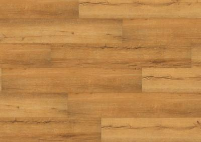 Wineo 500 Large V2 - Tirol Oak Honey