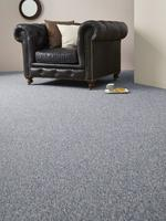 Pegasus carpet - Gray
